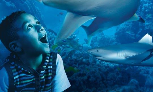 sea-life-london-aquarium-priority-tickets_header-18656